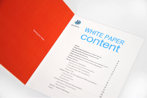 White Paper Translation – Banca