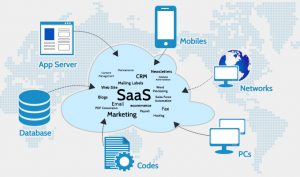 professional translators in saas