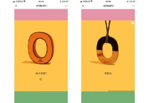 Chinese social media Wechat Hermes