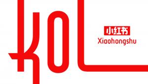 effective marketing strategy xiaohongshu 2021 KOL